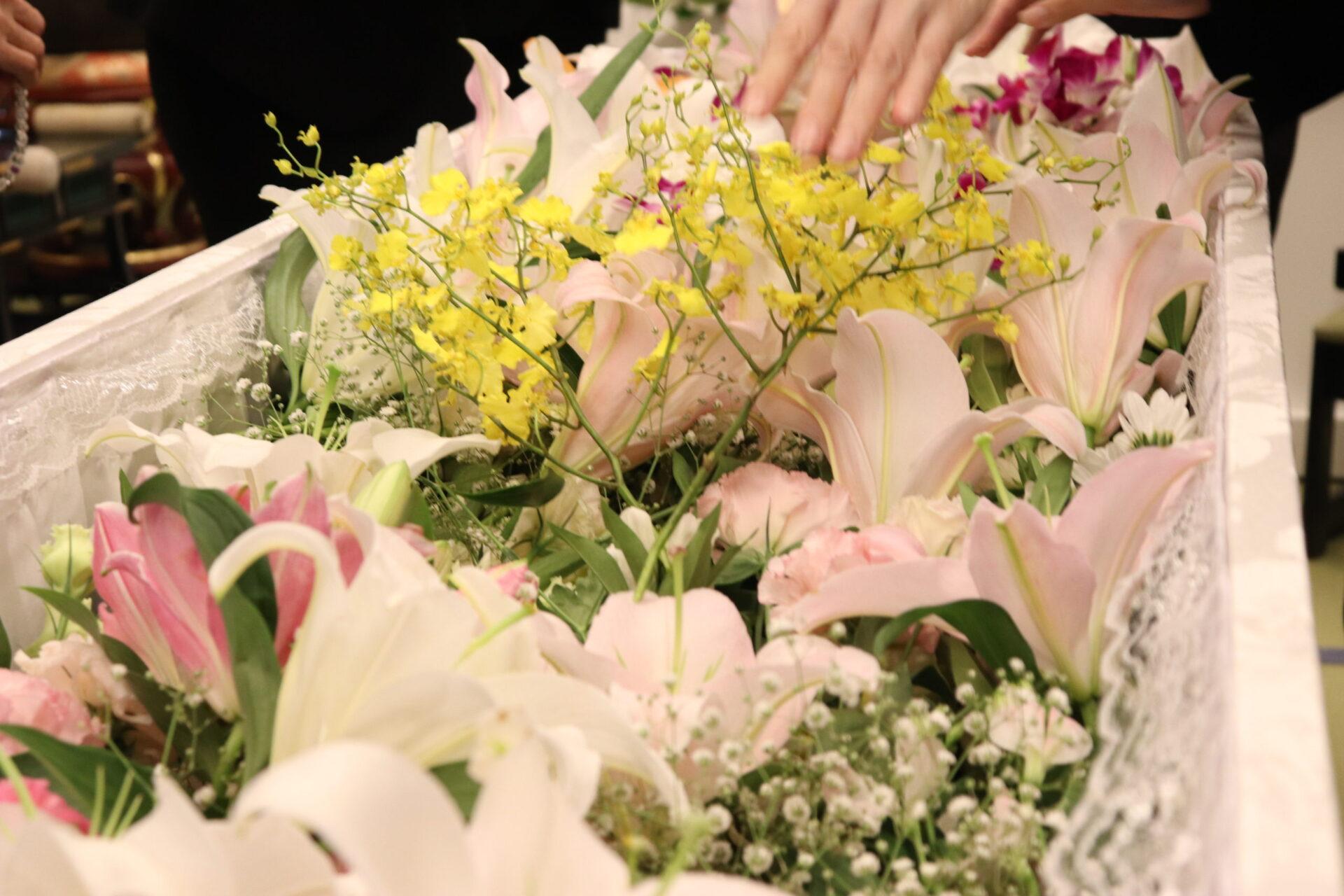 明るい花に囲まれて